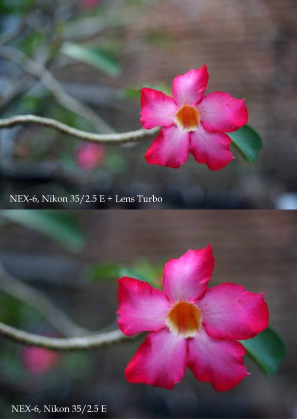 Lens Turbo + Lensa Nikon 35/2.5